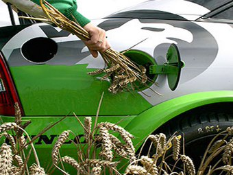 Biocombustibili di terza generazione