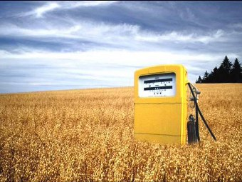 Biocombustibili per la produzione di energia elettrica