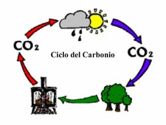 Emissioni biomasse